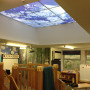 Sinclair-Scool-Skylight-panels