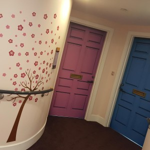 New care home wall and door coverings for Hampshire County Council car home