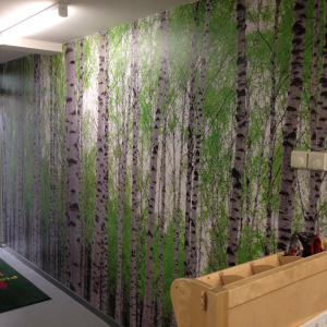 Sinclair-School-Silver-Birch-Forest-mural